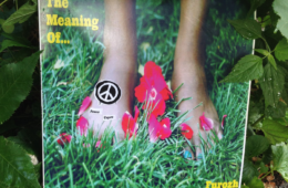 """Furozh Drops Debut Instrumental Album - """"The Meaning Of..."""""""