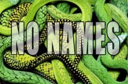New Single By C.Shreve The Professor - No Names (Prod. By ILe Flottante)