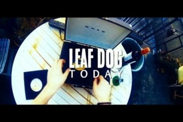 Leaf Dog - Today - High Focus Video