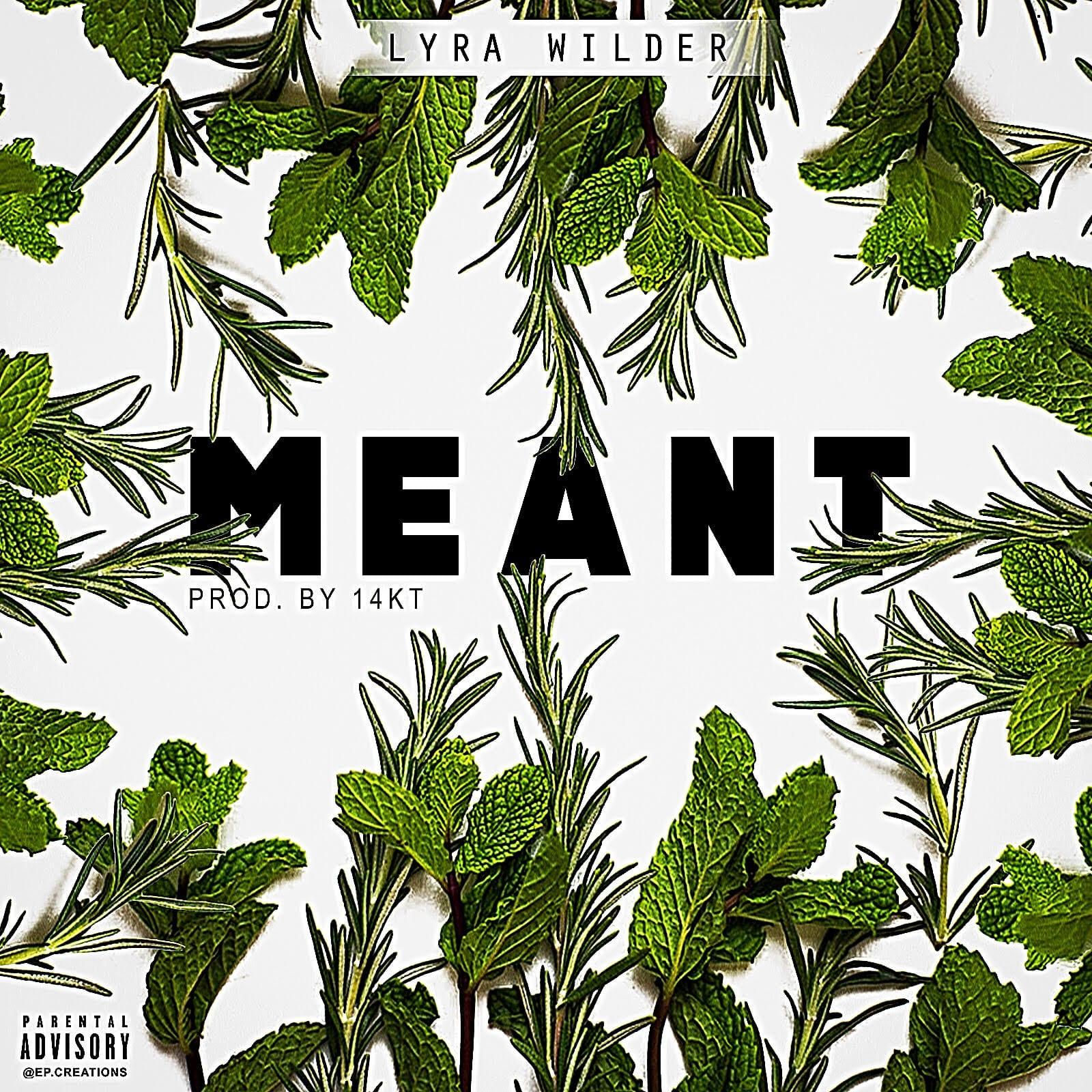 Lyra Wilder Drops New Single - MEANT
